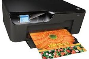 HP Deskjet 3520 e-All-in-One Printer Driver Download Free for